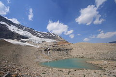 Landscape of Iceline Trail Stock Photography