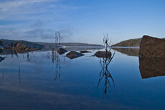 Landscape, Iddefjord seen from frog perspective Stock Photo
