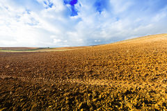Landscape with idle field. In Europe at sunny autumn day Royalty Free Stock Photography