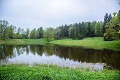 Landscape is idyllic. The forest and the lake in loue, Park. Summer day in nature. Pavlovsk Park, city of Pavlovsk. The kings Park Royalty Free Stock Photos