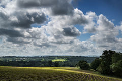 Landscape image of agricultural farm with new planted crops in S Stock Photo