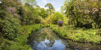 Landscape image of beautiful landscaped Gardens in Dorset Englan Stock Images