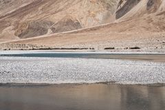 Landscape image of the blue Shyok river on the way to Nubra valley with mountain and blue sky background Stock Photography