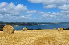 Hay Bales. Landscape image of hay bales in a field on the coast in the UK Royalty Free Stock Images