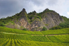 Landscape. Image of rows of grapevines leading to a craggy mountain face with a moody stormy sky stock photos