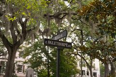 Savannah, Georgia / United States - June 25, 2018: Oglethorpe and Bull Streets are located in the historic park district. stock images