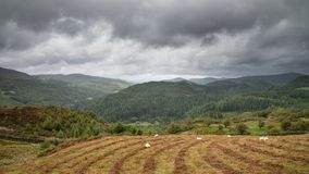 Landscape image of view from Precipice Walk in Snowdonia overloo stock images