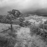 Landscape image of view from Precipice Walk in Snowdonia overlooking Barmouth and Coed-y-Brenin forest during rainy afternoon in. Black and white Beautiful stock photos