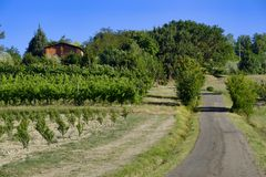 Landscape between Imola and Riolo Terme Emilia Romagna Stock Photography