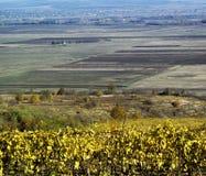 Landscape In Fall Season Stock Photos