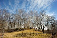 Landscape In March Royalty Free Stock Photos