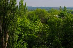 The landscape of the industrial city, green trees and mine waste heaps. On a warm summer day royalty free stock photography
