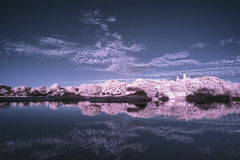 Landscape  in infrared of lake in English countryside in Summer Stock Photos