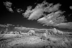 Landscape in infrared light Stock Images