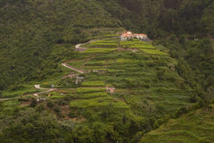 Landscape in the island of Madeira Royalty Free Stock Photography
