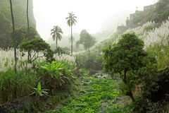 Landscape on island of Santo Antao, Cape Verde (against the light) Stock Photo