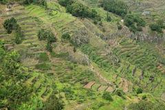 Landscape on island of Santo Antao, Cape Verde Stock Image