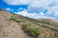 Landscape on Island of the Sun  on Titicaca lake. Bolivia. Stock Photos