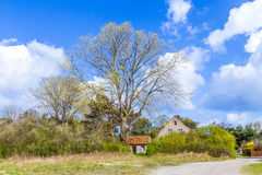 Landscape on the island of Usedom Stock Images