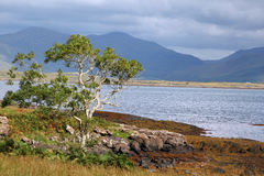 Landscape Isle of Mull, Scotland, UK Royalty Free Stock Photos