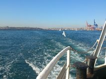 Landscape of istanbul from steamboat on sea. City view with blue sea, sky and flying sea gulls Royalty Free Stock Image