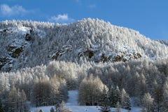 Landscape of Italian Alps Royalty Free Stock Photography