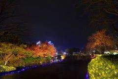 Landscape of Japan parks Nabana no sato winter stock image