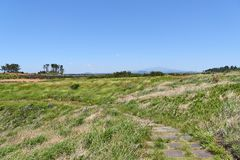 Landscape of Jeju with Halla mountain, stock photography