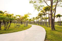 Landscape with jogging track at green garden Royalty Free Stock Image