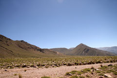 Landscape in Jujuy Stock Images
