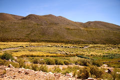 Landscape of Jujuy Royalty Free Stock Photo