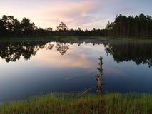 Landscape of Kõnnu Suursoo Stock Images