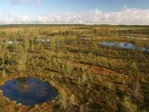 Landscape of Kõnnu Suursoo Royalty Free Stock Photo