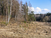 Landscape in the Kaluga region of Russia. Royalty Free Stock Image
