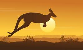 Landscape of kangaroo on hill silhouettes Stock Photo