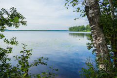 Landscape in Kavgolovo. The Kavgolovo Lake near Petersurgh Royalty Free Stock Photo