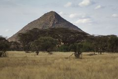 Landscape  in Kenya Stock Photography