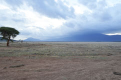 Landscape of Kenya Stock Photography