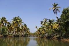 Landscape of Kerala Backwaters Stock Photo