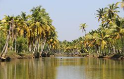 Landscape of Kerala Backwaters Royalty Free Stock Photography