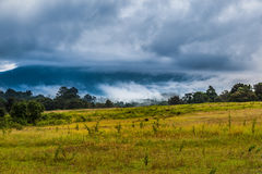 Landscape of Khaoyai national park Royalty Free Stock Photography