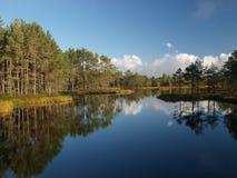 Landscape of Kõnnu Suursoo Stock Photo