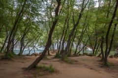 Landscape of KRKA National Park Royalty Free Stock Image