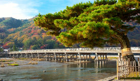 Landscape Kyoto Royalty Free Stock Photo