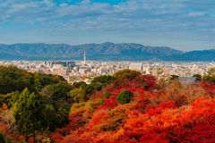 Landscape of Kyoto in autumn Royalty Free Stock Photography