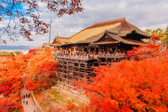 Landscape of Kyoto in autumn Stock Images