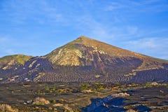 Landscape La Geria in Lanzarote, a Wine area Stock Image