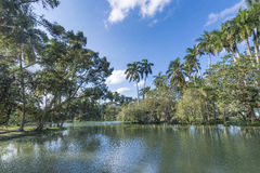 Landscape in Lagos de Mayajigua or San Jose del Lago-Cuba Royalty Free Stock Images