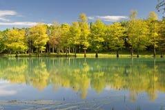 Landscape of lake Stock Photos