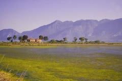 Landscape of lake Royalty Free Stock Photo